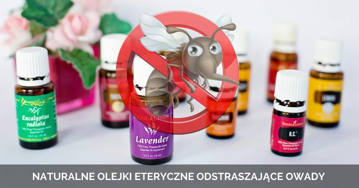 10 naturalnych olejków eterycznych odstraszających owady